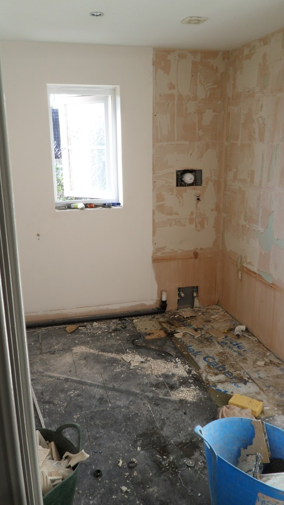 House Bathroom removed #1
